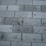 prepare you home for spring - roof damage